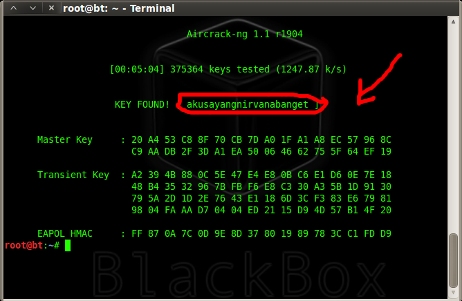 Cracking WPA/WPA2 – PSK Encryption