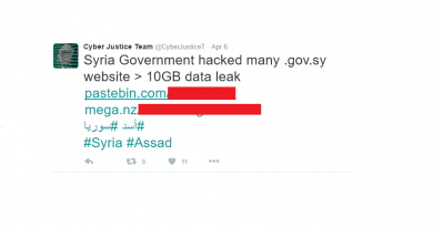 Hackers leaked 43 GB of Syrian Government data online