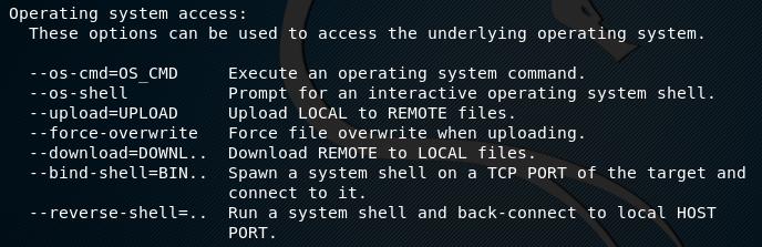 tplmap remote system options