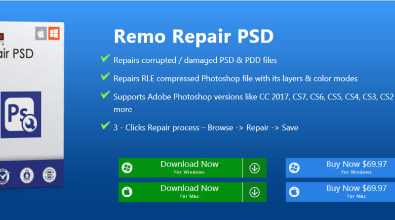 Remo Repair PSD kit