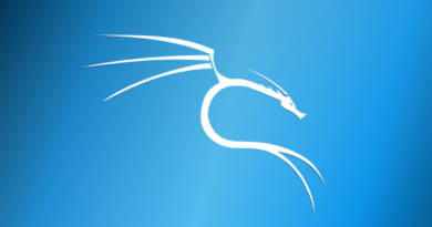 5 of the Most Popular Penetration Testing Tools Found in Kali Linux